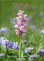 The Orchids of Ireland by Tom Curtis and Robert Thompson